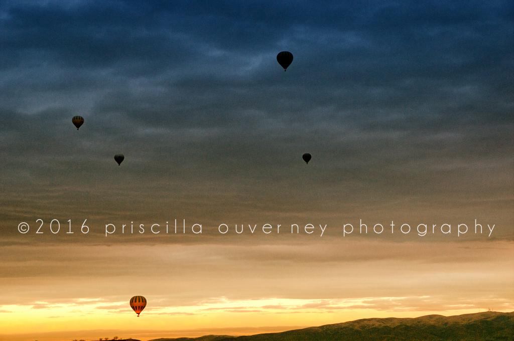_PRI2912-Edit.jpg